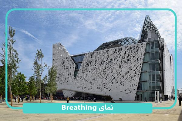 نمای ساختمان تنفسی یا breathing
